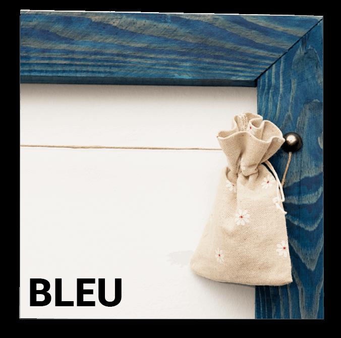 Bleu Polaframe